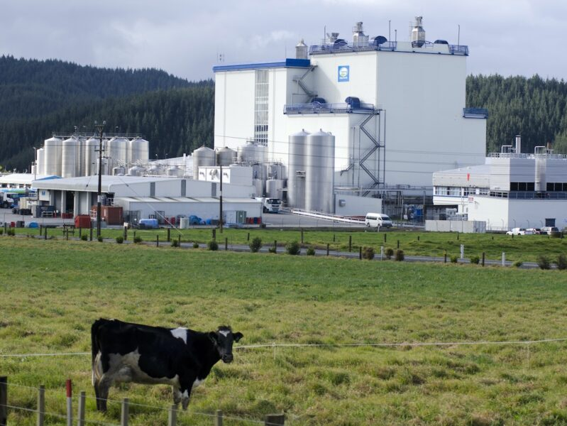 Watch: Could dairy factories pivot to plant proteins?