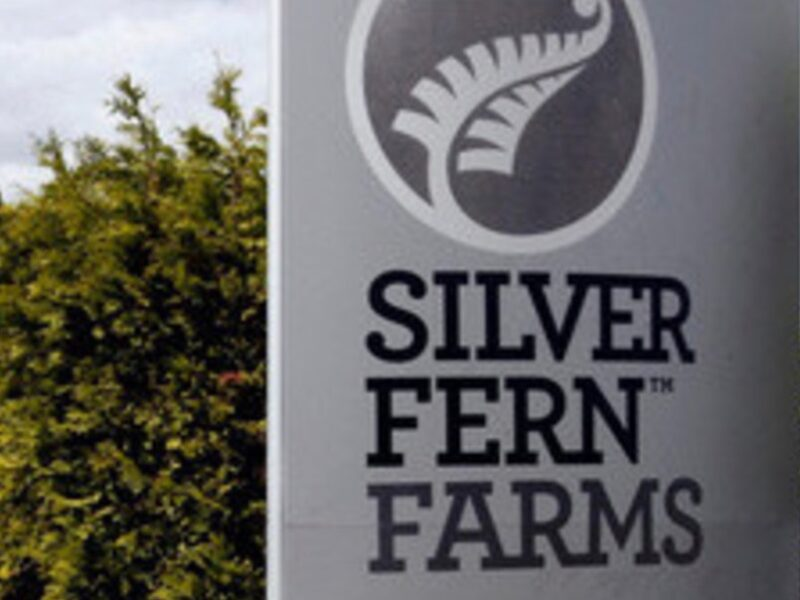 Silver Fern Farms to launch carbon zero beef