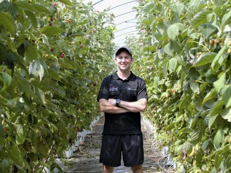 Northland berry business first to repay PGF loan