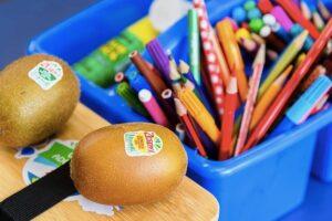 HVN backs kiwifruit sleep link study