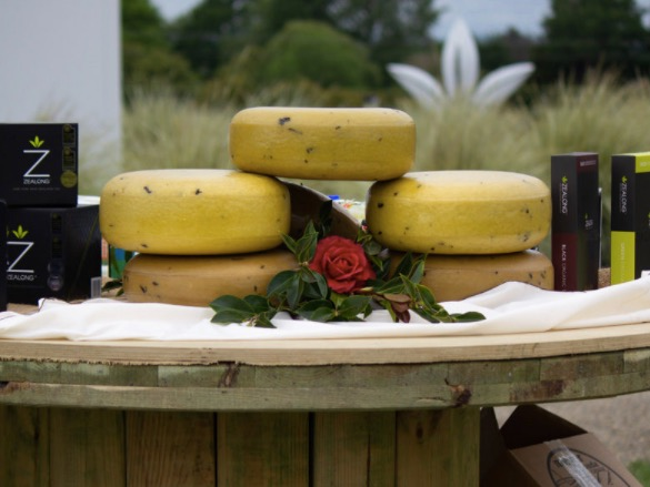 Champions of Cheese judging moves to Hamilton