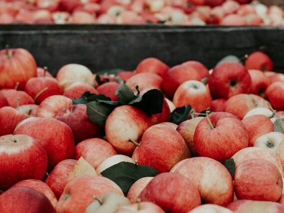 Fruit supplement eyes Asian markets following funding