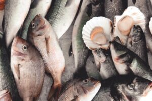 Feedback sought on fisheries catch limits