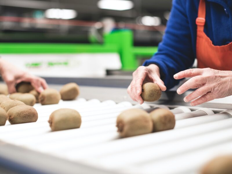 BOP Kiwifruit packhouse branches out – again