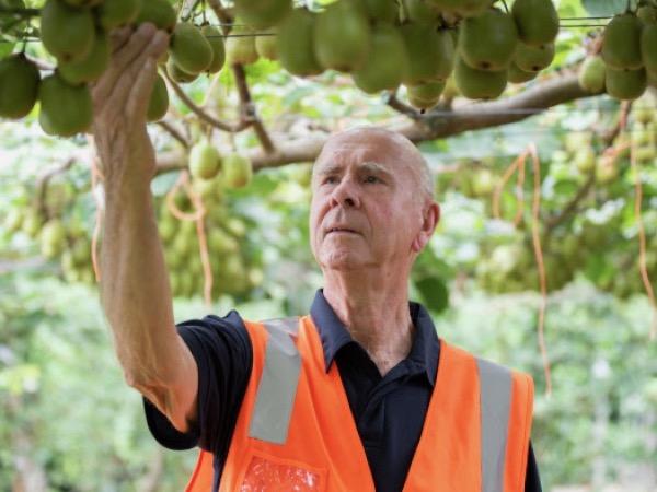 Kiwifruit team in top science award