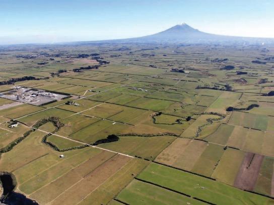 MPI seeks feedback on NZ Food Notice changes