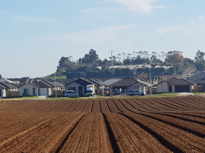 RMA replacement must consider food security – HortNZ