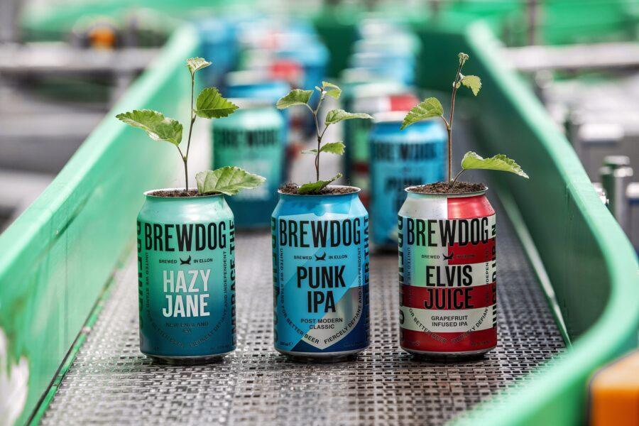 BrewDog expands to NZ