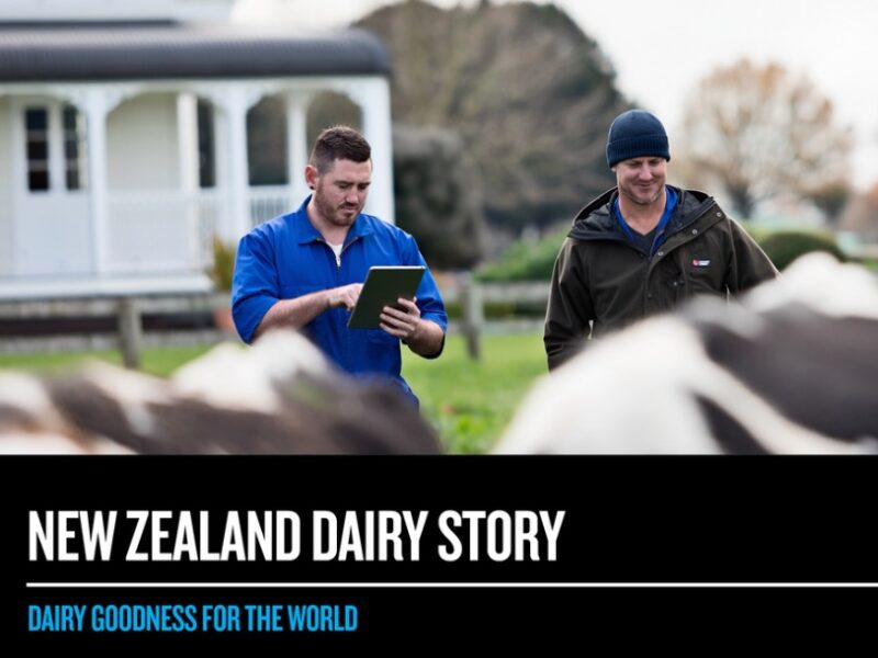 NZ Story launches NZ Dairy Story