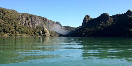 Whangaroa scallop fishery could close for two years