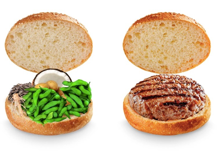 Perspectives: Should some plant-based burgers be considered 'junk food'?
