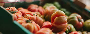 NZ Food Network opens Christchurch centre