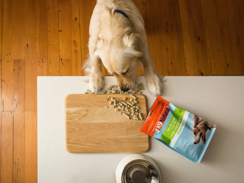 KKR acquires Natural Pet Food Group
