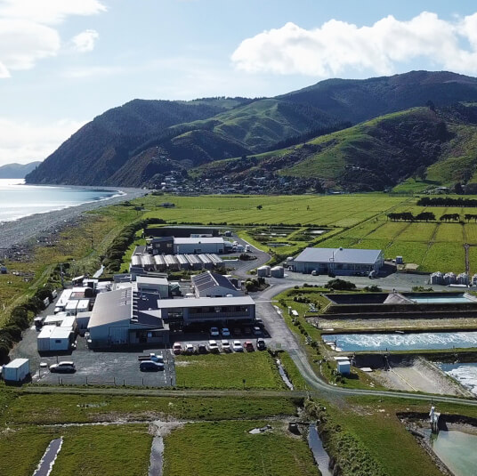 Cawthron opens national seaweed research centre