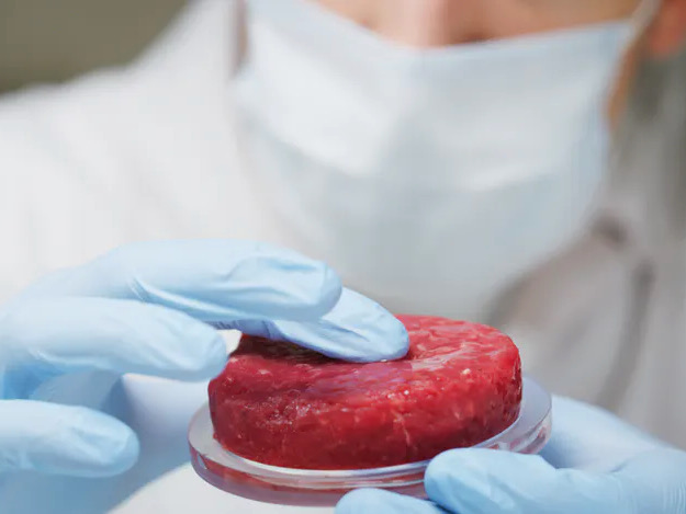 Cell-cultured meat – opportunities and threats for NZ's food sector