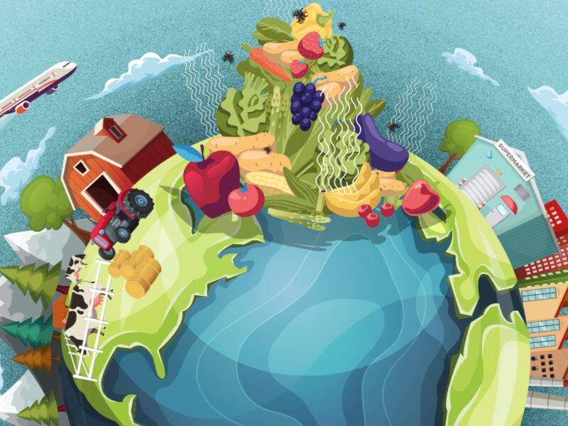 """Global food waste """"bigger than we thought"""" at 40% – report"""