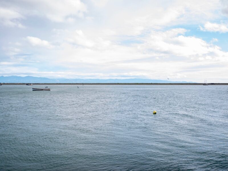 Aquaculture potential highlighted in iwi MOU