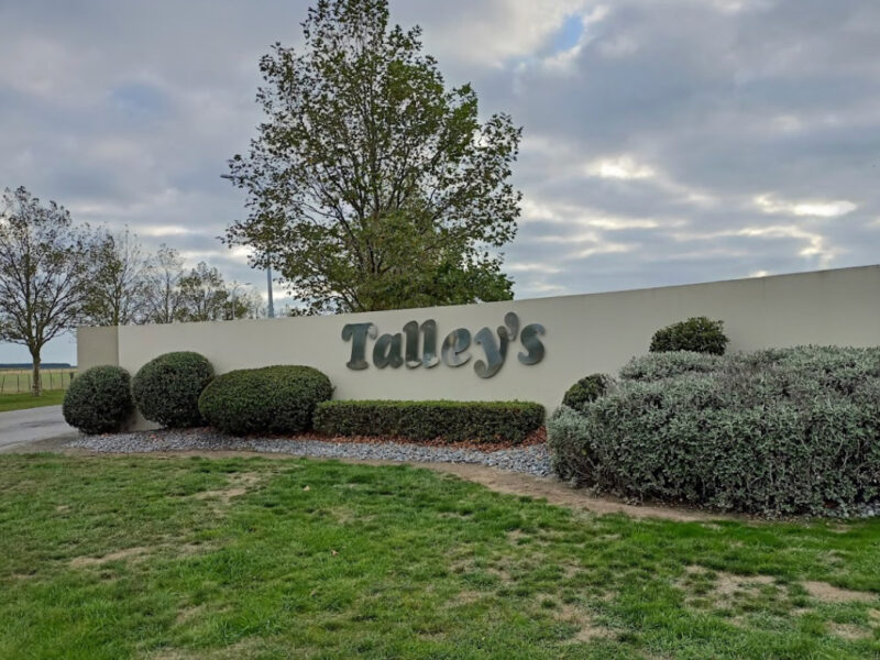 Talley's aiming for more than 80% staff vaccinated