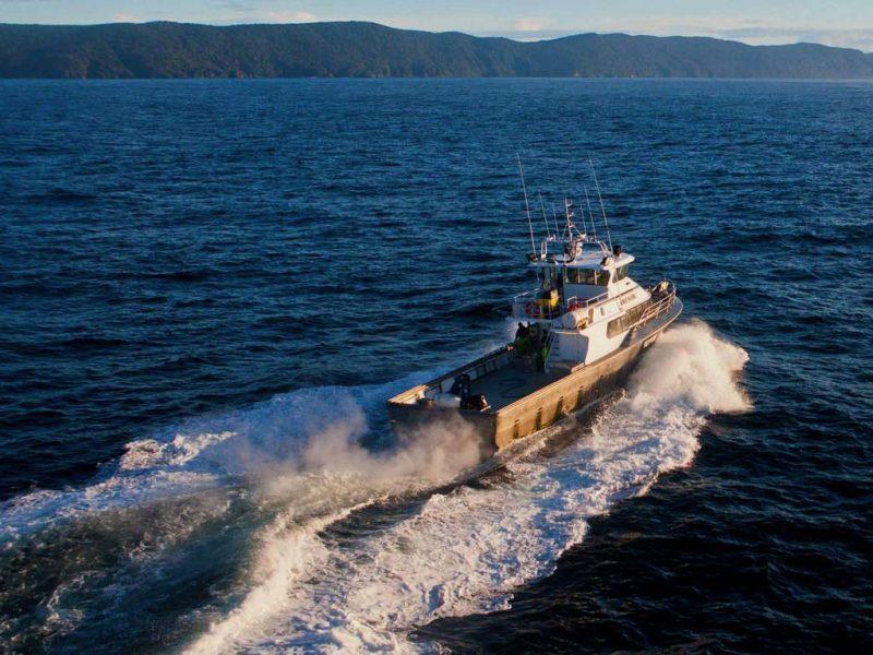Ngāi Tahu signs aquaculture agreement, eyes marine farming